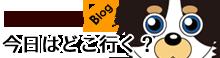 愛犬(ポメチワ)モコ ブログ 『愛犬モコの留守番カメラ見守り隊』