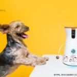 ペット 留守番カメラ【300台限定】ポムポムプリン コラボモデル Furbo(ファーボ)