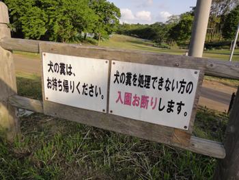 犬連れ 富田さとにわ耕園