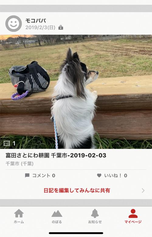 犬 散歩 GPS軌跡