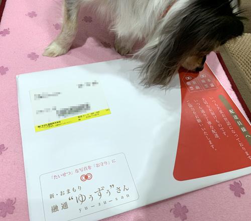 大阪「融通さん」のペットお守り