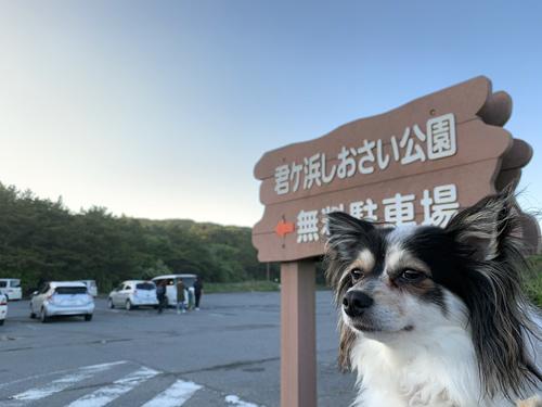 君ヶ浜しおさい公園 無料駐車場
