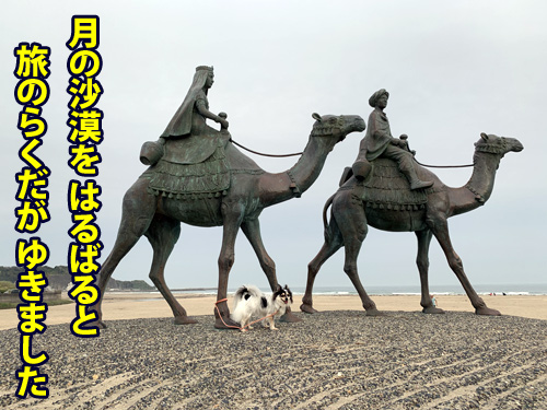 御宿 犬連れ 「月の砂漠像」