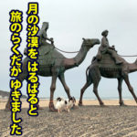 【千葉・犬連れ】御宿「月の沙漠公園」を愛犬と海岸散歩!アジ釣りも