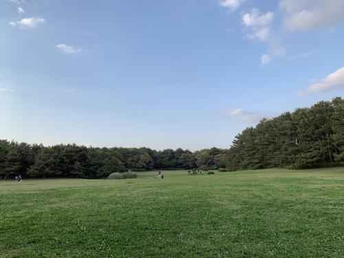 稲毛海浜公園の芝生の広場 犬連れ