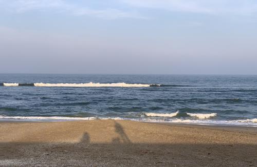 砂浜に写る影