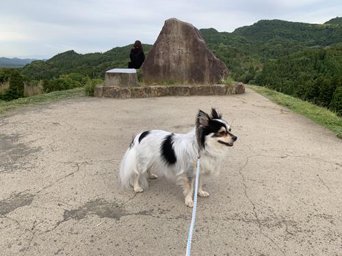 大山千枚田の石碑