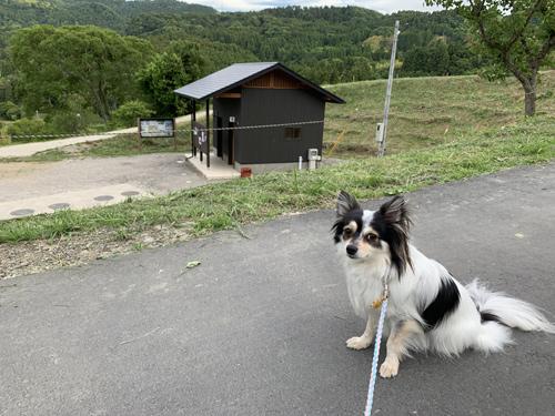 大山千枚田無料駐車場 トイレ
