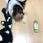 【散歩の必需品】犬用虫よけスプレーでマダニ・蚊から愛犬を守る!ニーム&シトロネラスプレー