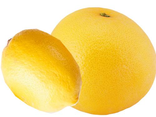 レモン・グレープフルーツ