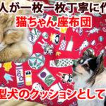 【職人手作り・猫ちゃん座布団】小型犬のクッションにも使えます!