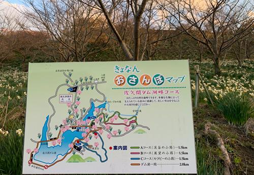 佐久間ダム親水公園 犬と散歩